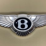 Bentley Continental GT GTC Flying Spur Airbag 3W0880206